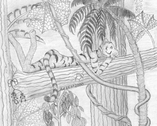 Pencil drawing of an anthro tiger lounging in a tree