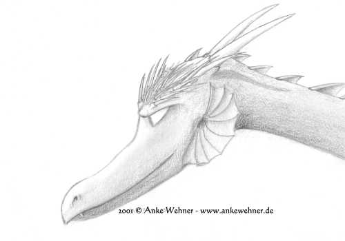 Pencil portrait of a dragon