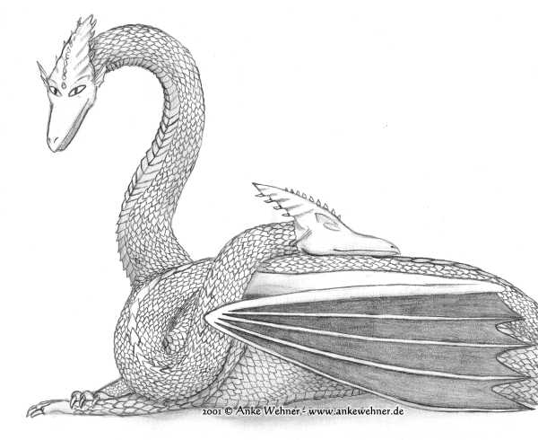 Pencil drawing of a western dragon lying on the ground