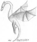 Pencil drawing of a wyvern