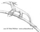 Pencil drawing of a made-up animal resembling a very tiny anteater