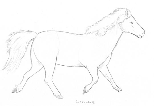 Pencil sketch of a running pony