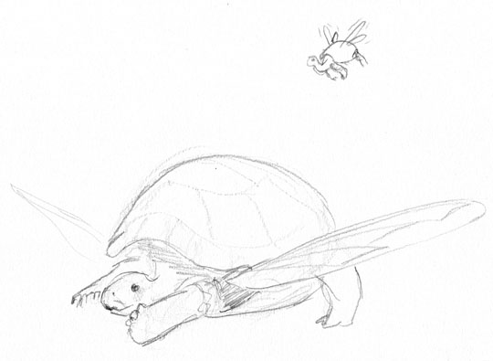 Pencil sketch of a turtle with insect wings coming from the same openings in the shell as its forelegs.