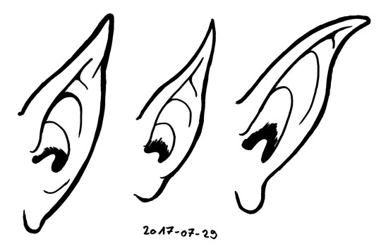 Ink doodles of three different pointed ears