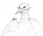 Pencil sketch of a bird-like fae creature. She has bird eyes and an upper beak, but humanoid jaws and lips.