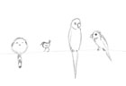 Sketch of birds on a wire