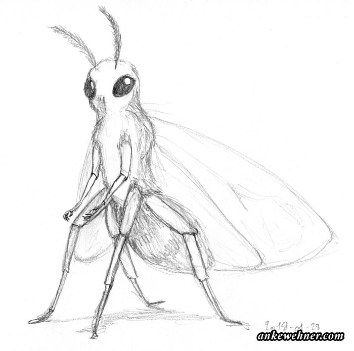 pencil sketch of an anthromorphised moth (full figure)