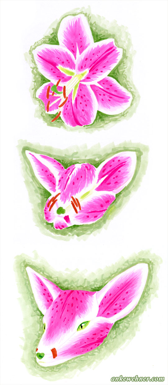 A pink and white lily folds its petal forwards and turns into a fox face